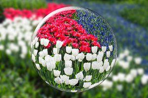 Glazen bol met rode, witte en blauwe bloemen