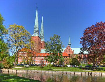 Kathedraal van Lübeck met molenvijver, Lübeck, Sleeswijk-Holstein, Duitsland, Europa van Torsten Krüger