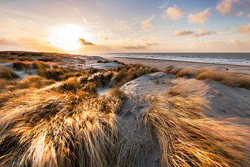 Het Zuid-Hollands landschap met een prachtig uitzicht op het duingebied, strand en zee. van Eelco de Jong