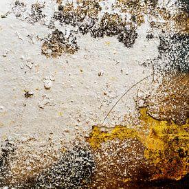 erosie van marjolein Parijs
