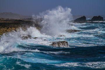 Nordküste Aruba von Ruurd van der Meulen