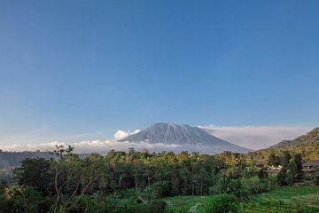 Rijstterrassen in bergen bij zonsopgang voor de vulkaan. Bali Indonesië van Tjeerd Kruse
