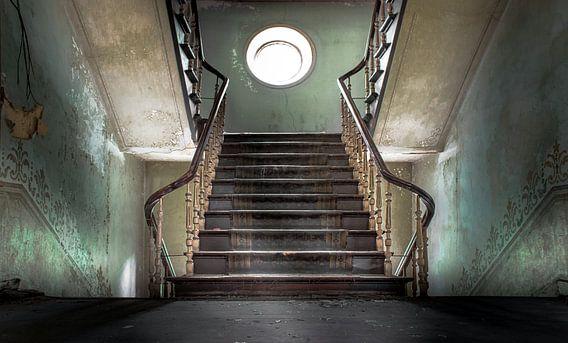 Master stairs of a abandoned castle van Olivier Van Cauwelaert