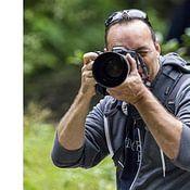 Roland Zimmermans profielfoto