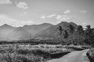 Schwarz-Weiß-Foto Ost-Taiwan. von Erik Juffermans