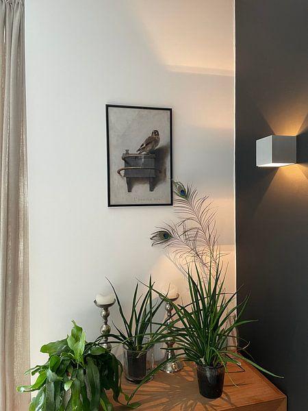 Klantfoto: 'Het puttertje', Carel Fabritius