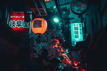 Laternen in der Luft in Tokio von Mickéle Godderis