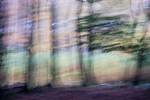 Dancing forest von Boudewijn Swanenburg