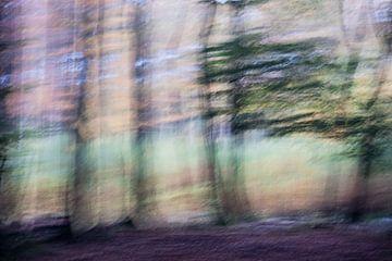 Dansend bos von Boudewijn Swanenburg