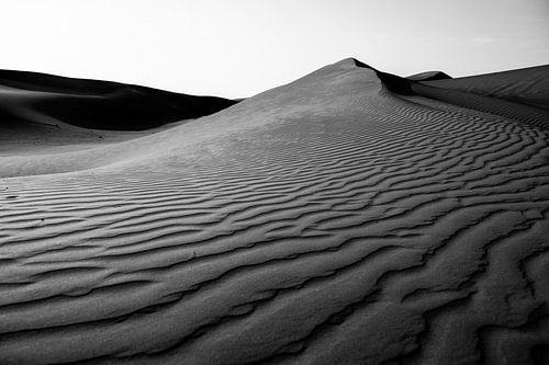 Woestijnlandschap in zwart wit van Roel Beurskens