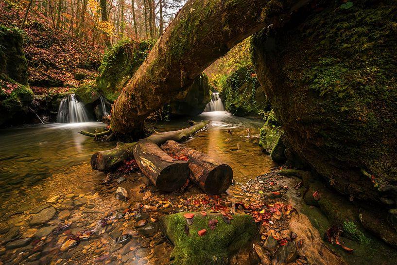 Flora's secret van Joris Pannemans - Loris Photography