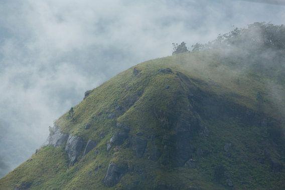 Mistige heuvels in Sri Lanka van Gijs de Kruijf