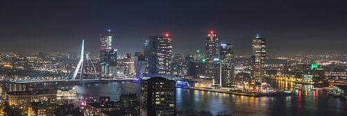 Het uitzicht op de skyline van Rotterdam van