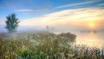 Sonnenaufgang über Sumpfgebiet von Fotografiecor .nl