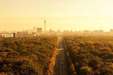 Berlijnse skyline met Tiergarten en televisietoren van Frank Herrmann