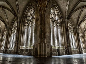 Kloostergang Dom (kleur) von Lex Schulte