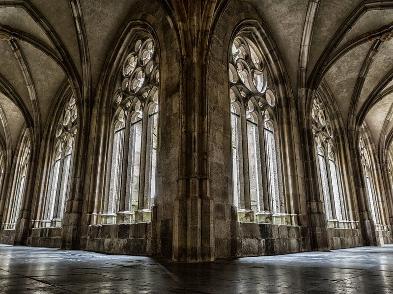 Kloostergang Dom (kleur) van Lex Schulte