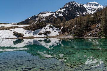 Lac Bleu, Schweiz von Ingrid Aanen