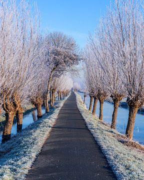 Nederlands winterlandschap van Marleen Kuijpers