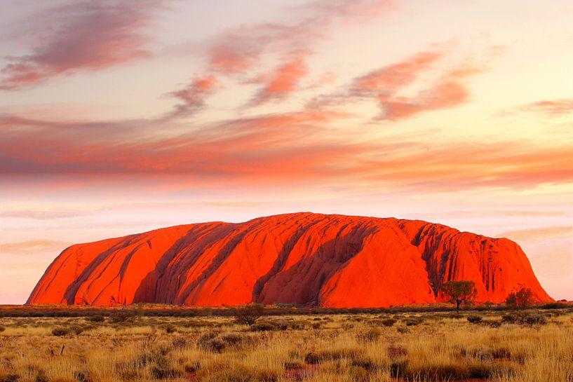 Avondrood Uluru-Ayers Rock van Inge Hogenbijl