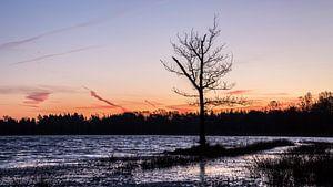 Oranje lucht boven het Leersumse Veld. van De Utrechtse Internet Courant (DUIC)