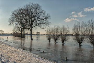 Schaatsen in de uiterwaarden bij Ravenswaaij van Moetwil en van Dijk - Fotografie