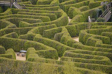 Ouderwets doolhof of labyrint van Patrick Verhoef