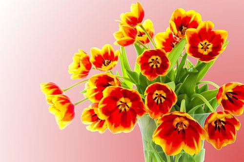 Boeket tulpen van