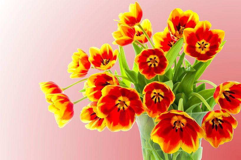 Boeket tulpen van 7Horses Photography