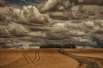 paysage somme en france sur anne droogsma