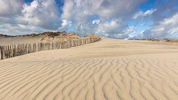 Dünen von Den Haag im nahe von Kijkduin  Niederlände von Rob Kints