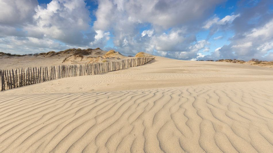 Prachtige Hollandse wolkenlucht in Westduinpark Den Haag