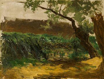 Carlos de Haes-Bullenbüsche, alte Weiden, antike Landschaft
