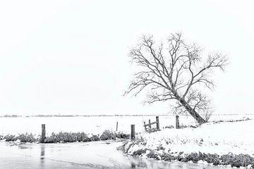 Winter aan de Groene Steeg von Erik Veldkamp