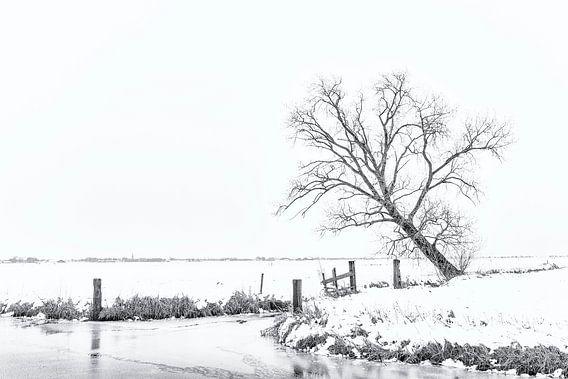 Winter aan de Groene Steeg
