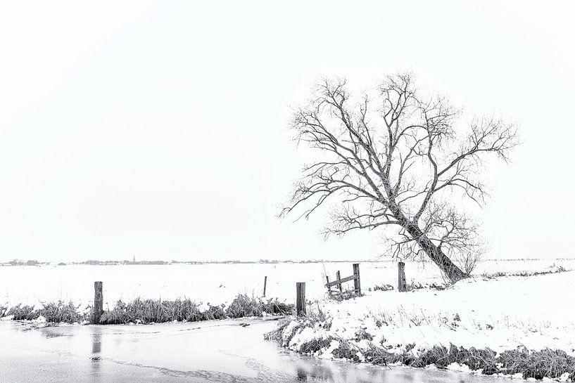 Winter aan de Groene Steeg van Erik Veldkamp
