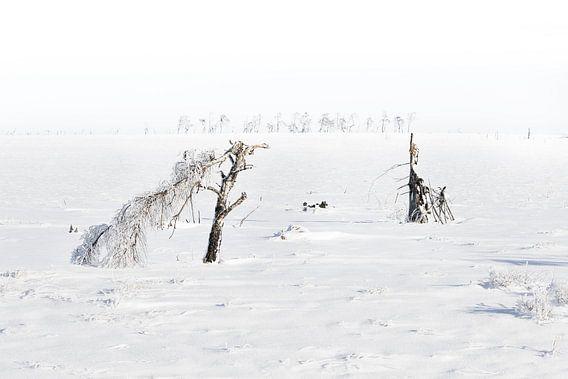 Winter landschap van Vandain Fotografie