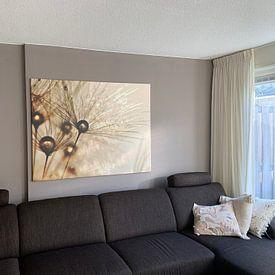 Kundenfoto: Paardenbloem gouden druppels von Julia Delgado, auf leinwand