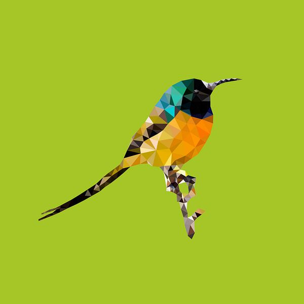 Vogel van Low Poly
