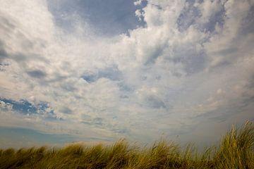 helmgras onder blauwe lucht van Bernadet Gribnau