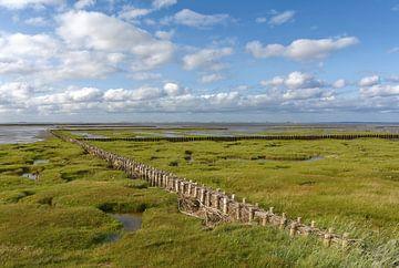 Zoutweide met lahnung in de Waddenzee van Peter Eckert
