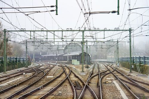 Aankomst station Haarlem van Arjen Roos