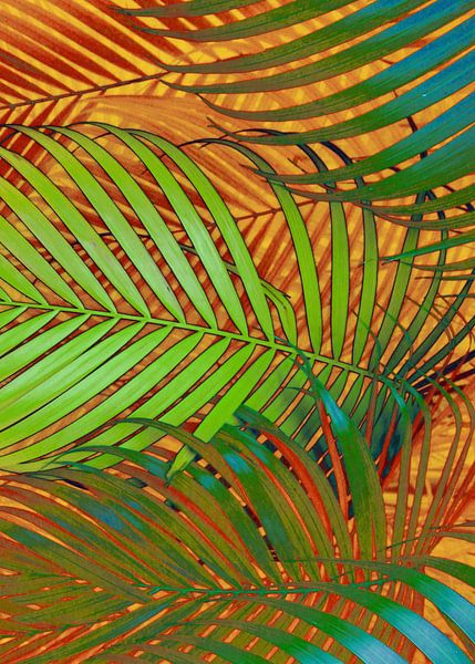 TROPICAL LEAVES POP-ART no2 van Pia Schneider