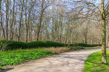 Maria-Hendrika-Park in Ostende von didier de borle