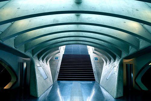 Alien stair van Werner V.M.
