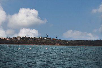 Curaçao - Flamingo Zoutpannen van Rowenda Hulsebos