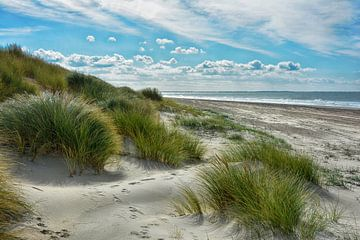 Holländische Dünenlandschaft von Joachim G. Pinkawa