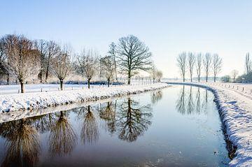 Kahle Bäume, die sich im Fluss spiegeln. von Ruud Morijn