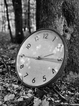Klok in het bos 2 van Jörg Hausmann
