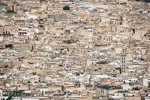 De koningsstad Fes, Marokko